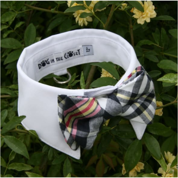- White Shirt Dog Collar With Plaid Bow Tie