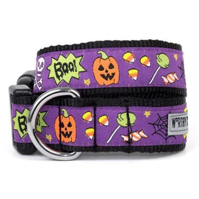 Fright Night Collar & Leash Collection bling dog collars, cute dog collar, dog collars, fun dog collars, leather dog collars