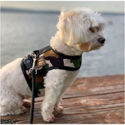 Rambo Luxe Dog Harness NEW ARRIVAL