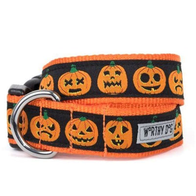 Jack-O'-Lattner Collar & Leash Collection bling dog collars, cute dog collar, dog collars, fun dog collars, leather dog collars