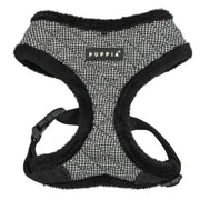 Gasper Dog Harness A dog harnesses, harnesses for small dogs