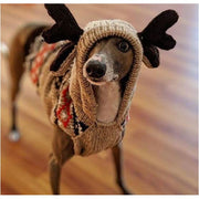 - Hand-Knit Wool Moosey Hoodie For Dogs clothes for small dogs cute dog apparel cute dog clothes dog apparel dog hoodies