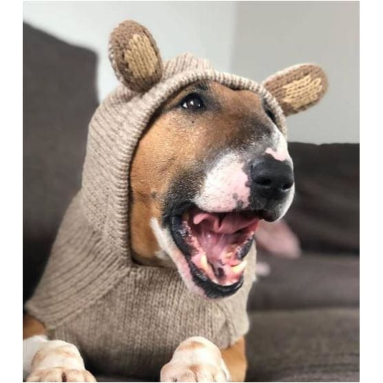 - Hand-Knit Wool Monkey Hoodie For Dogs clothes for small dogs cute dog apparel cute dog clothes dog apparel dog hoodies