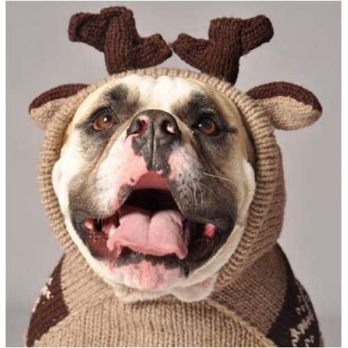 - Hand-Knit Wool Moosey Hoodie For Dogs Sweaters