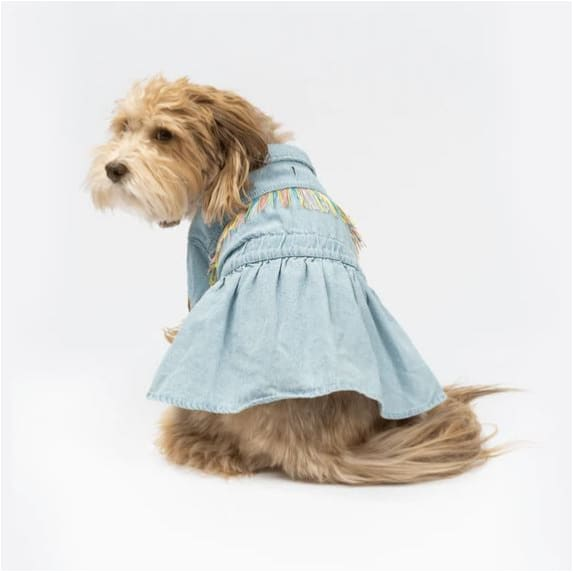Canvas Hex Cushion Dog Bed in Ocean NEW ARRIVAL