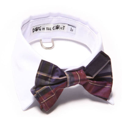 - White Shirt Dog Collar With Purple Plaid Silk Bow Tie dog in the closet NEW ARRIVAL
