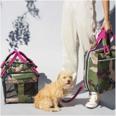Out-of-Office Pet Carrier Camo/Magenta NEW ARRIVAL