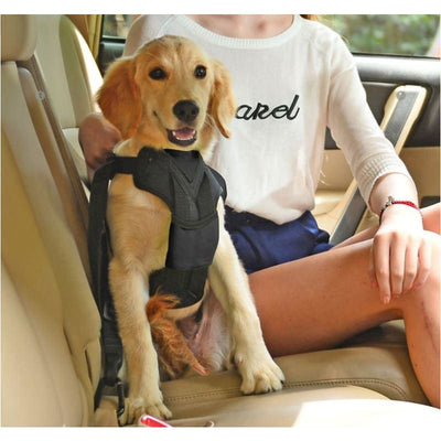 - Road-To- Safety Dog Car Harness