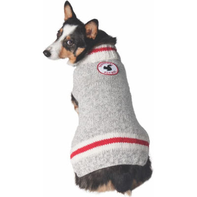 Squirrel Patrol Dog Sweater clothes for small dogs, cute dog apparel, cute dog clothes, dog apparel, dog hoodies