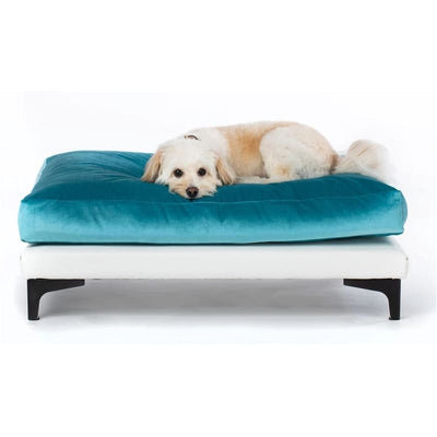- Orthopedic Aqua Velvet Soho Milo Dog Bed