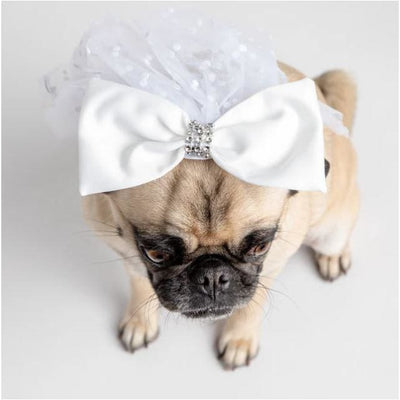 Windsor White Satin Bridal Veil