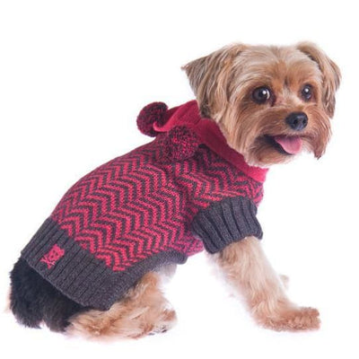 Varsity Girl Sweater with Scarf clothes for small dogs, cute dog apparel, cute dog clothes, dog apparel, dog sweaters