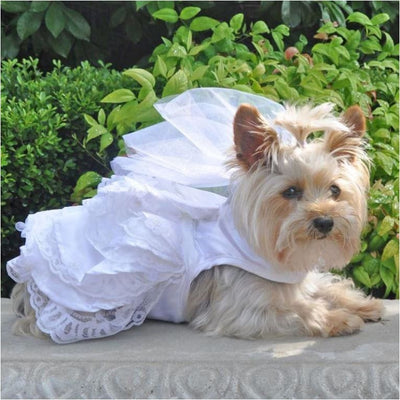White Satin Wedding Harness Dress & Leash Set