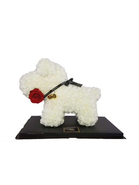 White Rose Dog Red Forever Long-lasting Rose