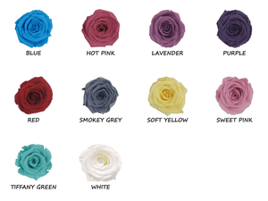 Forever Long-lasting Small Rose chart