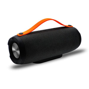 E13 Portable Bluetooth Speaker with FM Radio