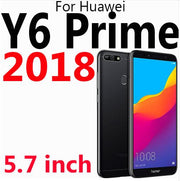 For y6 prime 2018