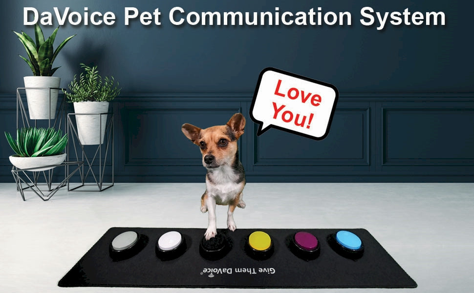 dog buttons for communication