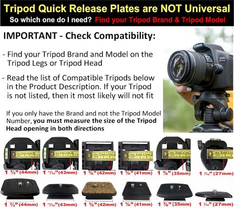 Image of tripod head plate