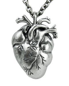 Silver Anatomic Heart Necklace