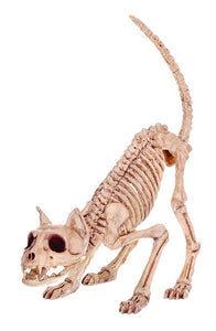 Animal Skeleton Props - The Lazy Raven