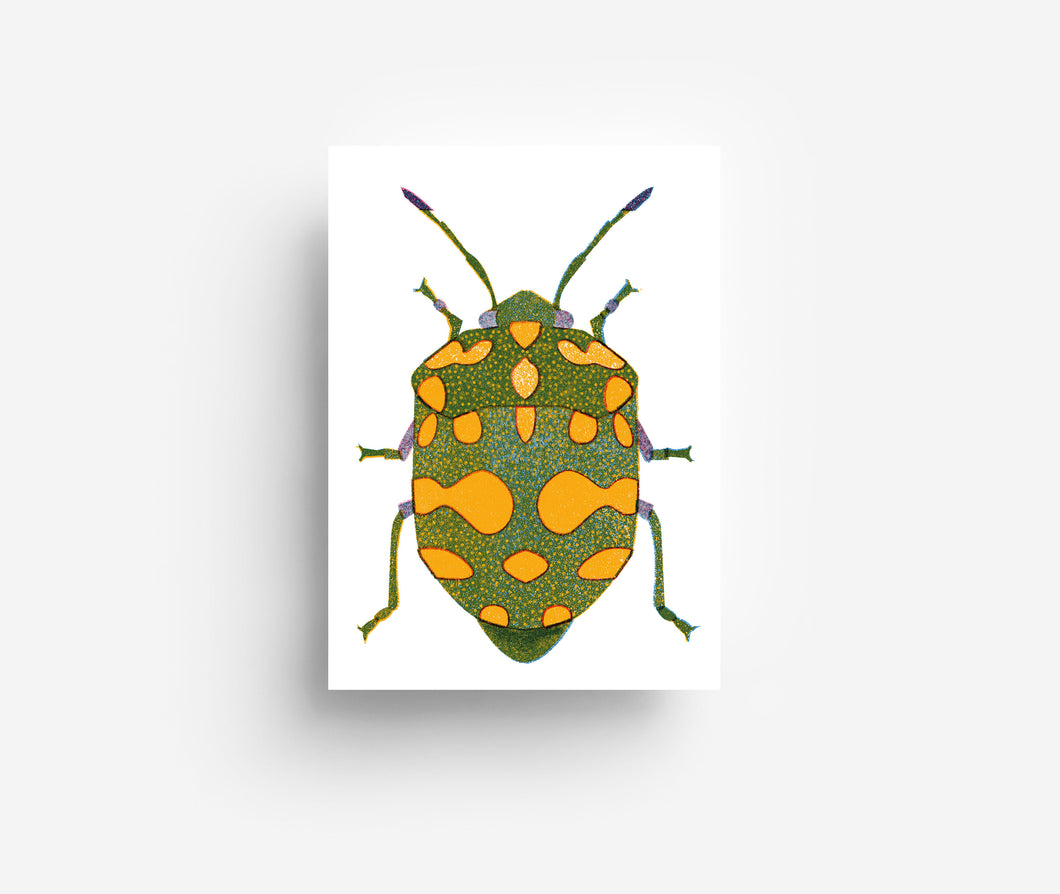 Green Bug Postcard DIN A6