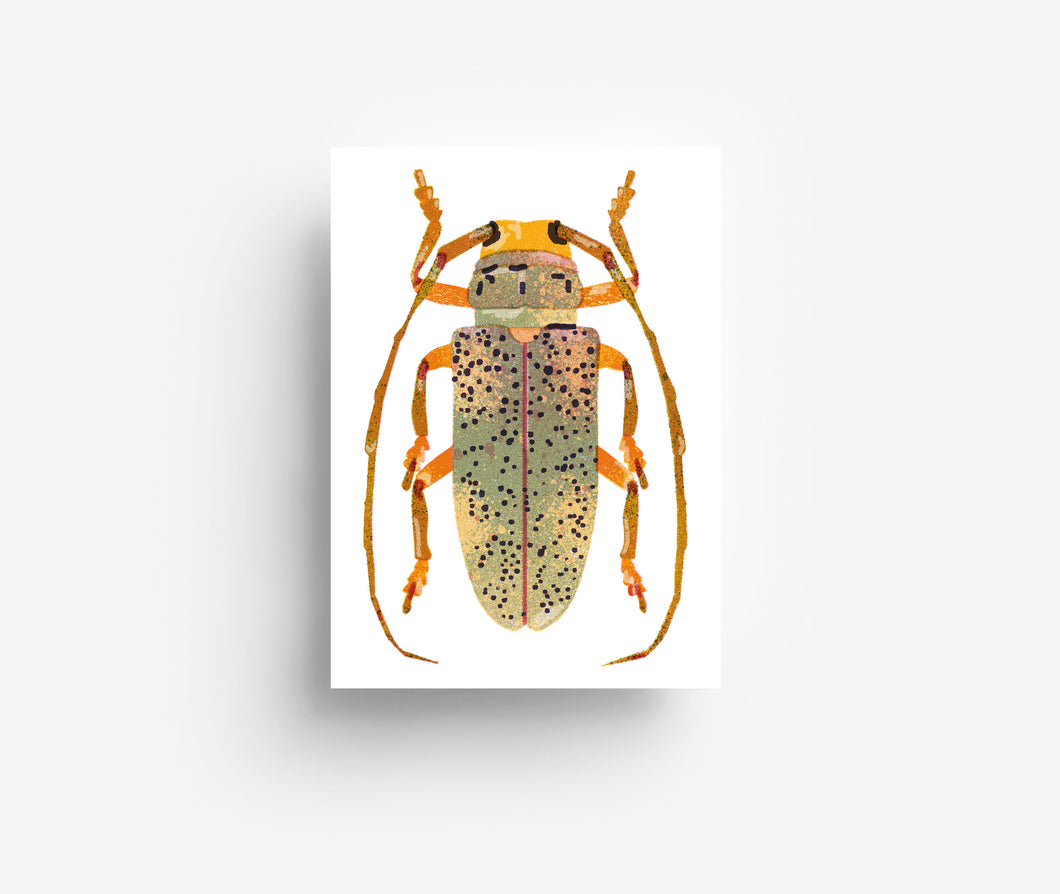 Yellow Bug Postcard DIN A6