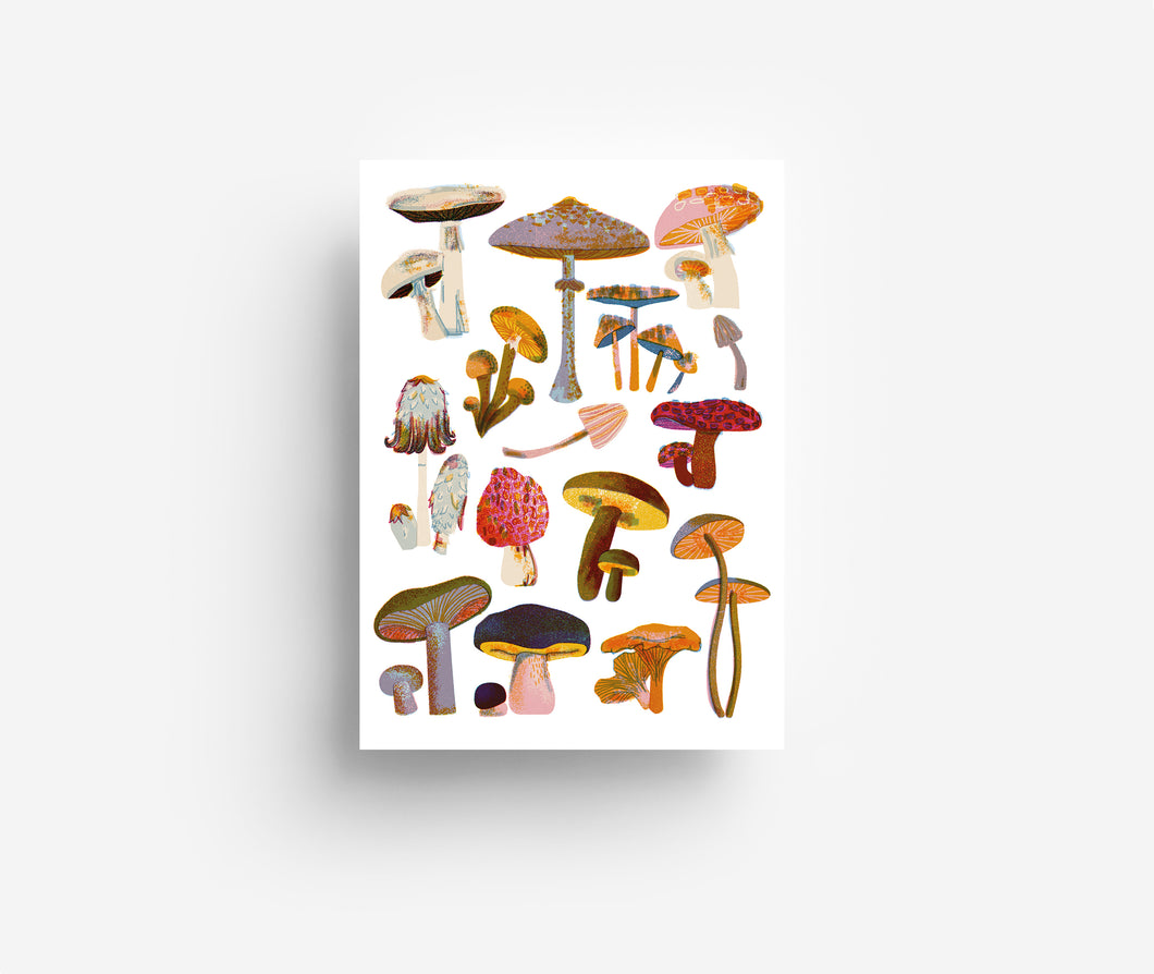 Mushrooms Postcard DIN A6