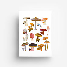 Load image into Gallery viewer, Mushrooms A4 Print