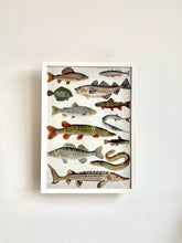 Load image into Gallery viewer, Fish Print DIN A3