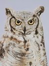 Hoot the Owl Art Print