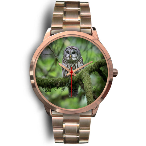 Owl Watch-Silent Forest