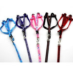New Pets Puppy Lead Harness Strengthen Colorful Leash