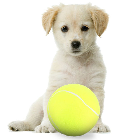 Dog Tennis Ball Large Pet Toys Funny Outdoor Sports Dog Ball