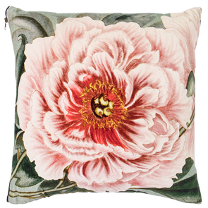 Single Rose Velvet Cushion