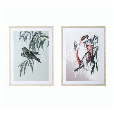 Colourful Bird Prints - 2 colours