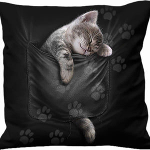 POCKET KITTEN - Square Cushion - Spiral USA