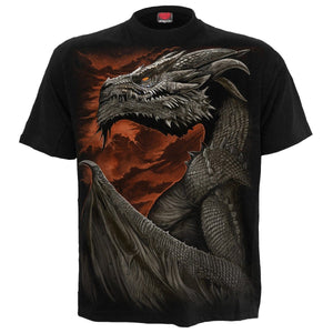 MAJESTIC DRACO - T-Shirt Black - Spiral USA