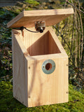 Camera-Ready Nest Box