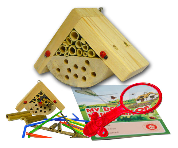 Mini bugs 'Bobby's Bug Box'