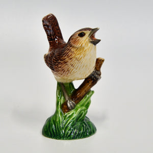 Miniature Wren 1