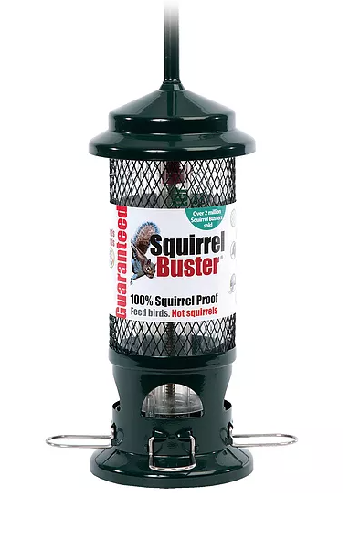 Squirrel Buster Bird Feeder
