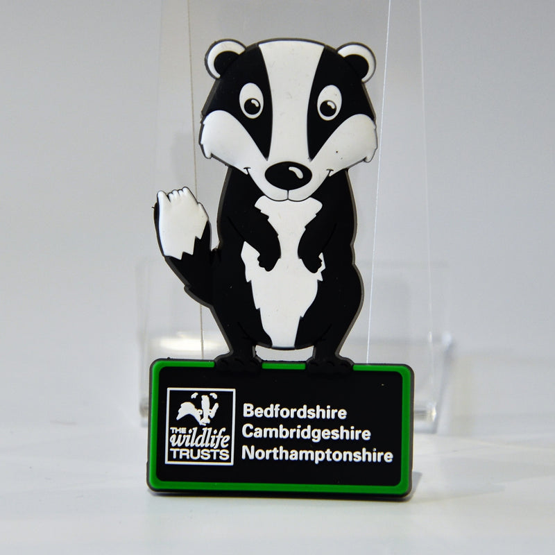Wildlife Trust BCN Cartoon Badger Magnet 1