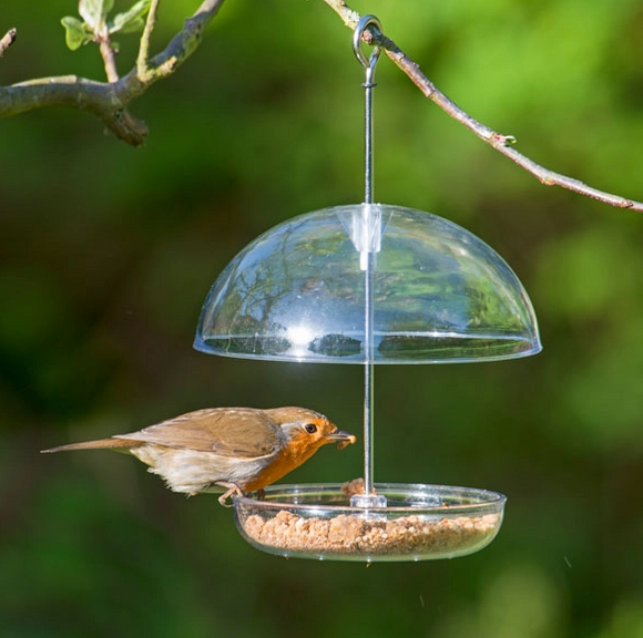 Adjustable Robin Feeder