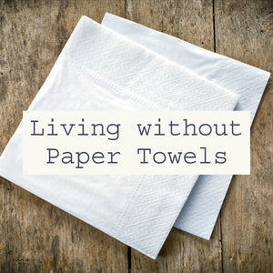 Living without Paper Towels
