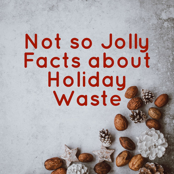 Not so Jolly Facts about Holiday Waste