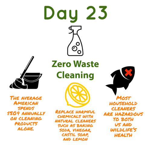 zero waste cleaning