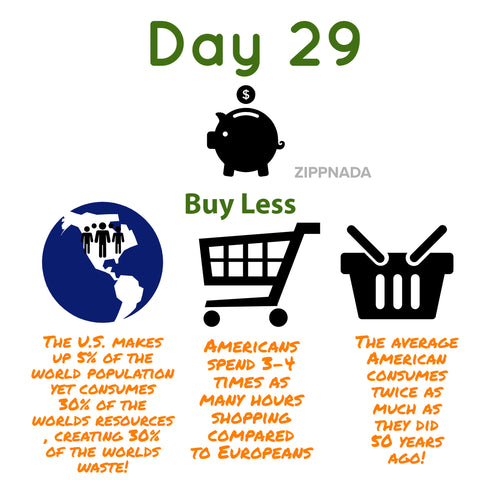 zero waste buy less