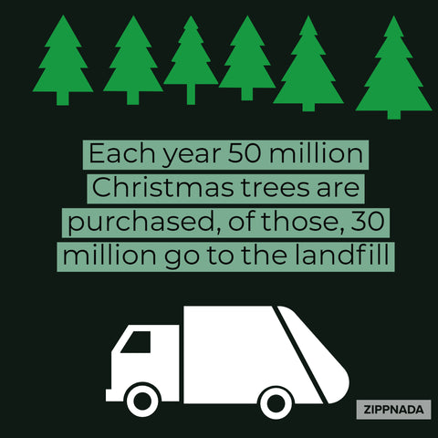 Holiday Waste Facts