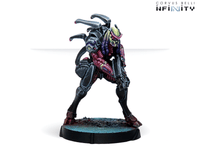 Infinity Shasvastii Action Pack - Combined Army 11